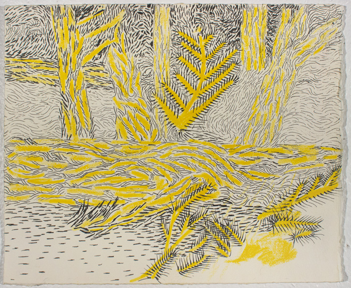 yellow-woods-2-1